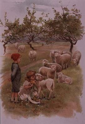 Children with Lambs among the daisies