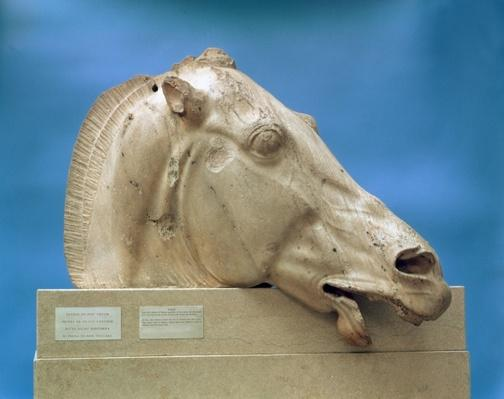 Head of one of the horses of Selene, goddess of the moon, from the east pediment of the Parthenon, 447-432 BC