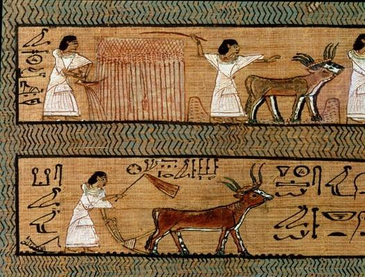 Reaping and ploughing, detail from a depiction of farming activities in the afterlife, from the Book of the Dead of the Scribe Any, c.1250 BC
