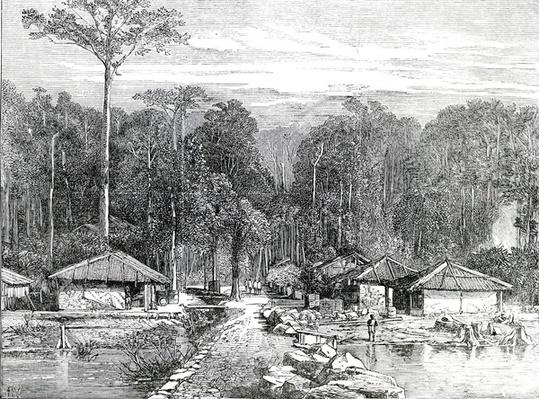 The Adaman Islands: Hope Town with Mount Harriet, showing the pier where Lord Mayo was stabbed, taken from the Illustrated London News, 1872