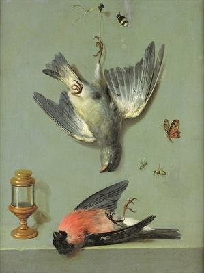 Still Life With Birds and Insects, 1713