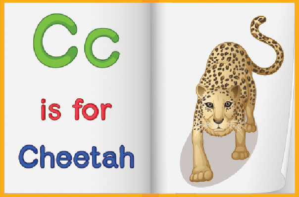 Picture of Cheetah in a Book | Clipart