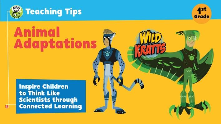 Animal Adaptations Teaching Tips | RTL-2015-2020