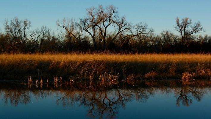 Platte Basin Timelapse 4: A Prairie Slough