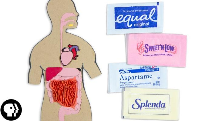 Are Some Sweeteners Better Than Others? | Braincraft