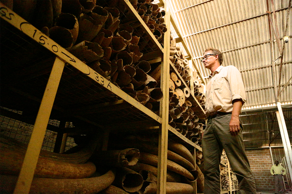 Aidan Hartley and Tanzania's Stockpiles