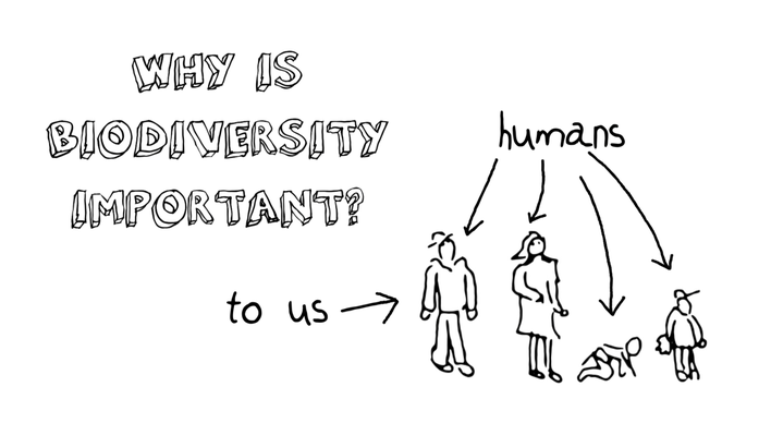 Biodiversity Course