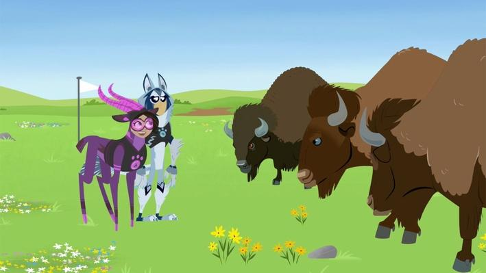 Bison Roadblock | Wild Kratts