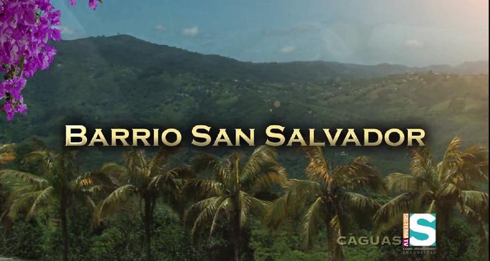 Barrios de Puerto Rico: Barrio San Salvador de Caguas