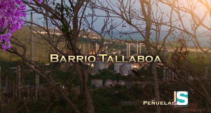 Barrios de Puerto Rico:Barrio Tallaboa de Peñuelas
