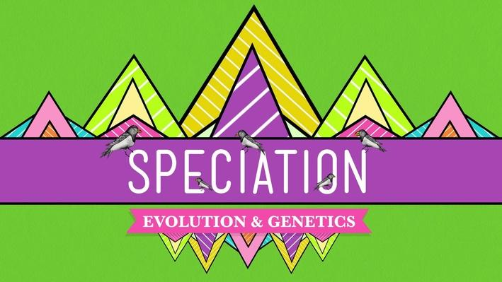 Speciation: Of Ligers & Men | Crash Course Biology