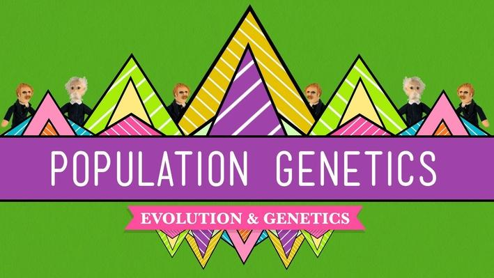 Population Genetics: When Darwin Met Mendel | Crash Course Biology