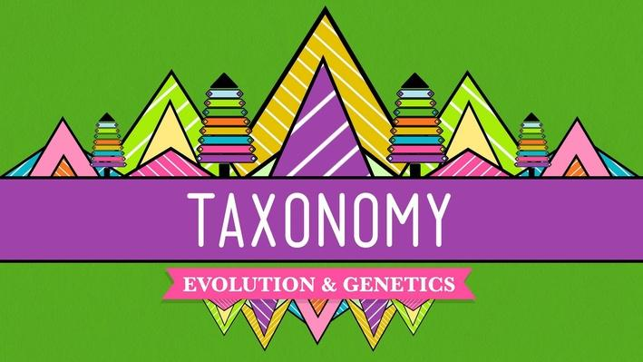 Taxonomy: Life's Filing System | Crash Course Biology