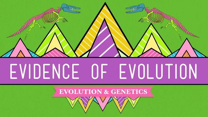 Evolution | Crash Course Biology
