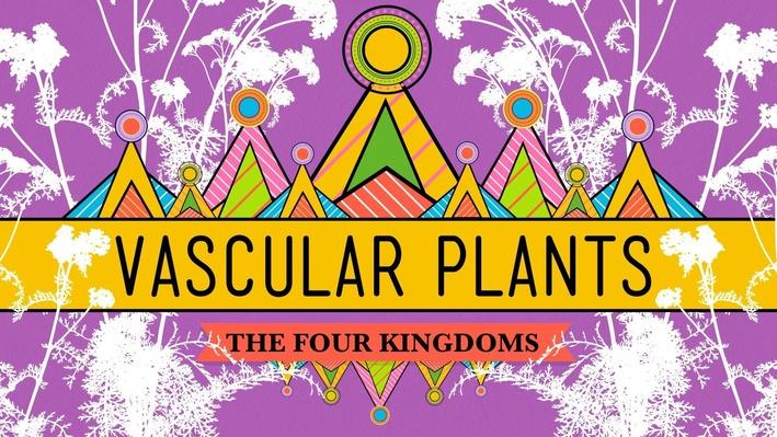 Vascular Plants = Winning! | Crash Course Biology