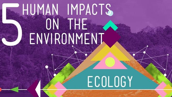 5 Human Impacts on the Environment | Crash Course Ecology