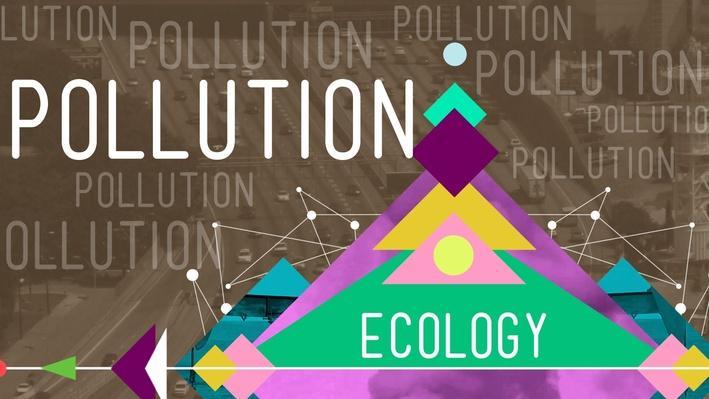 Pollution | Crash Course Ecology