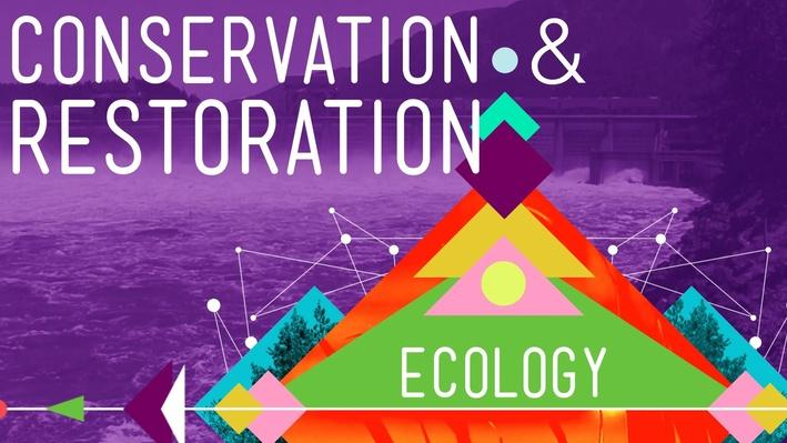 Conservation and Restoration Ecology | Crash Course Ecology