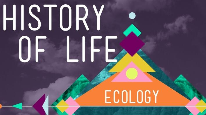 The History of Life on Earth | Crash Course Ecology