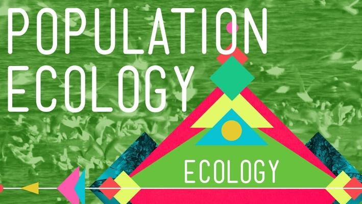 Population Ecology: The Texas Mosquito Mystery | Crash Course Ecology