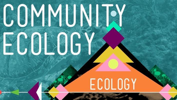Community Ecology I: Feel the Love | Crash Course Ecology