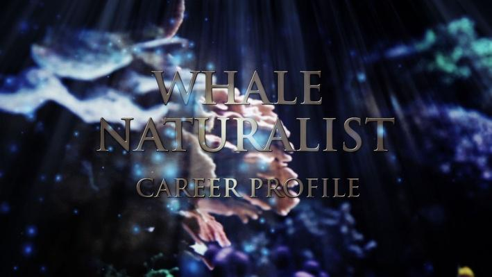 Whale Naturalist | Career Profile - Episode 1