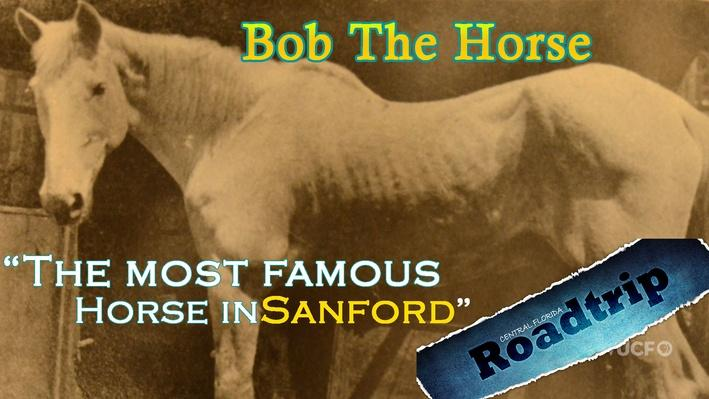 Sanford Old Bob the Horse l Central Florida Roadtrip
