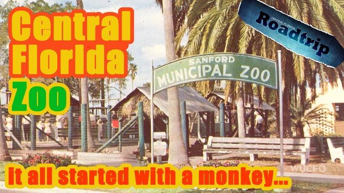 Sanford Zoo l Central Florida Roadtrip