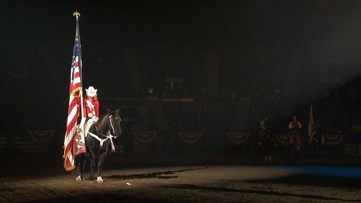 National Western Stock Show | Colorado Experience