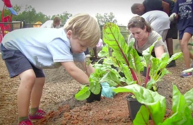 Captain Planet's Learning Gardens Program | Project Learning Garden