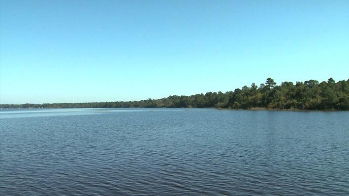 Carolina Bays Video