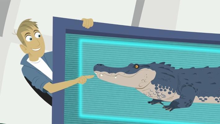 Crocodilians | Wild Kratts