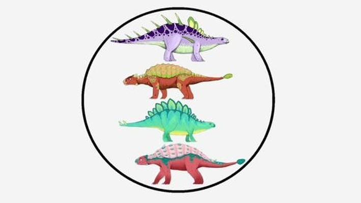 Dinosaur Discoveries: Classification - Dinosaur Train | PBS KIDS Lab
