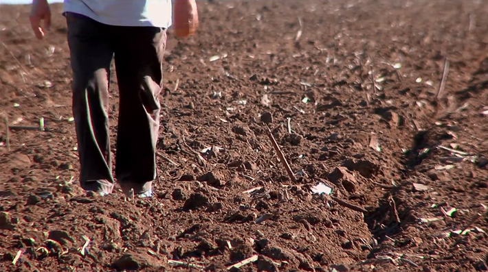 How Dirt Works | Video
