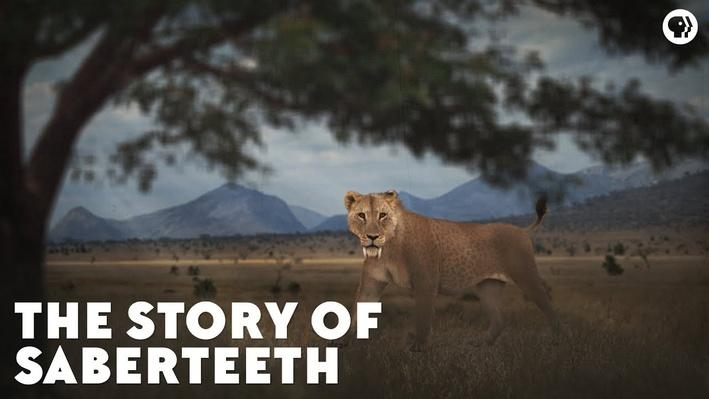 The Story of Saberteeth | Eons