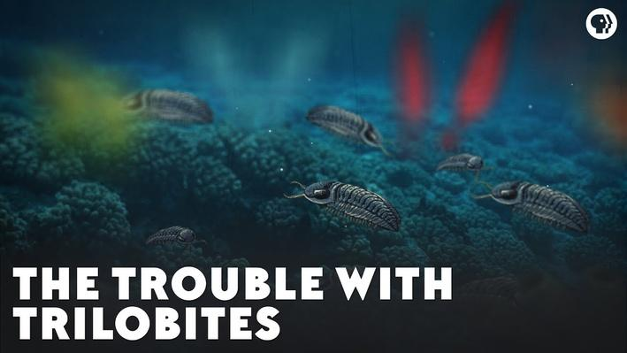The Trouble With Trilobites | Eons