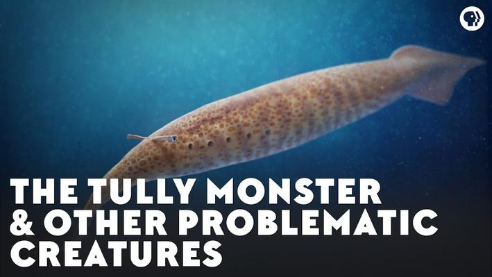 The Tully Monster & Other Problematic Creatures | Eons