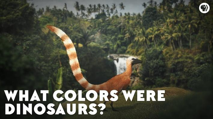 What Colors Were Dinosaurs? | Eons