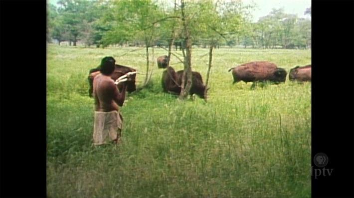 Image of early Iowans hunting bison