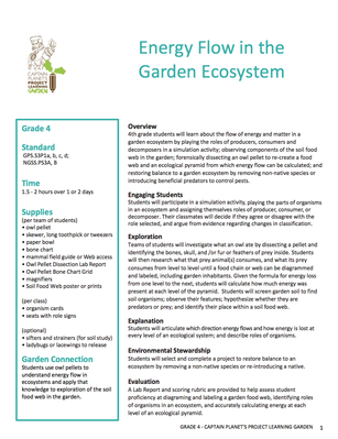 Energy Flow in the Garden Ecosystem | Project Learning Garden
