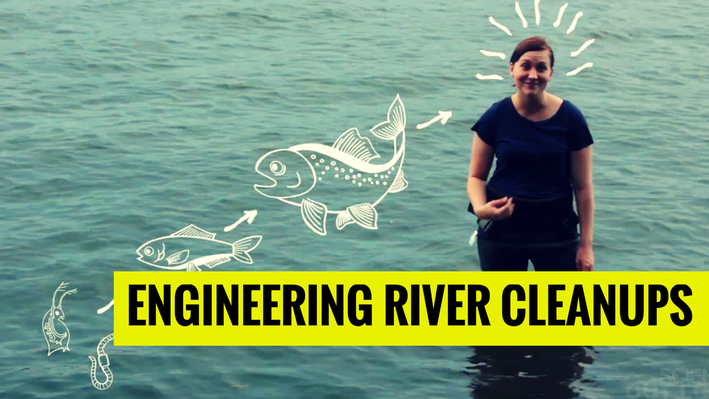 Engineering River Cleanups   MIT's Science Out Loud