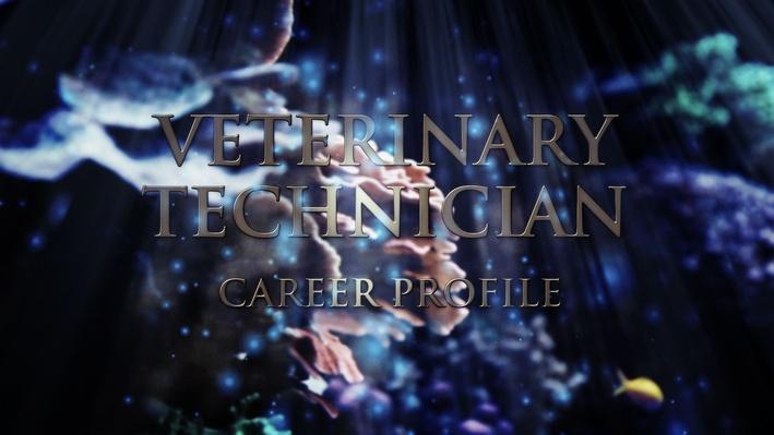 Veterinary Technician | Career Profile - Episode 1