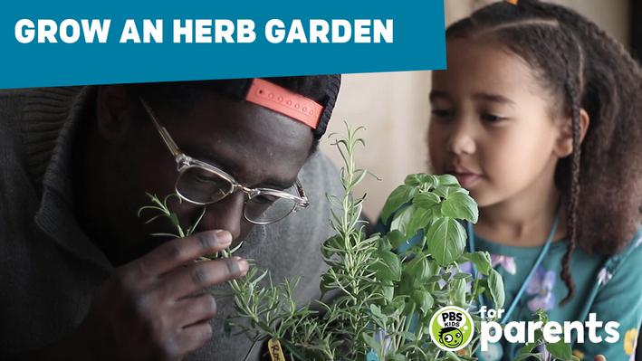 Nature Cat - Grow an Herb Garden   Science Crafts for Kids