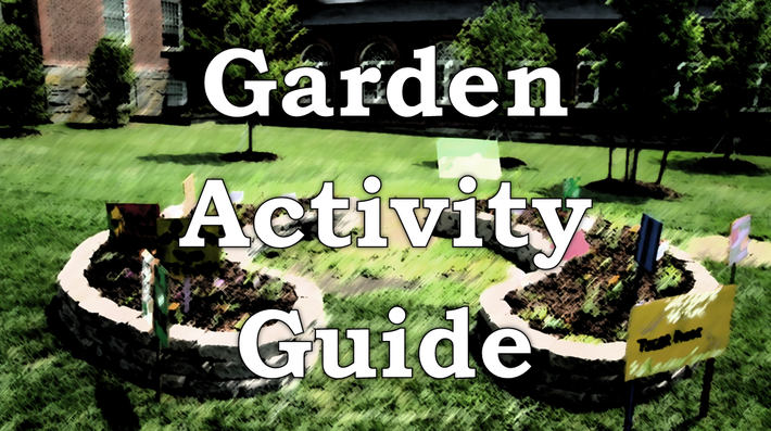 Water and Filtration | Garden Activity Guide