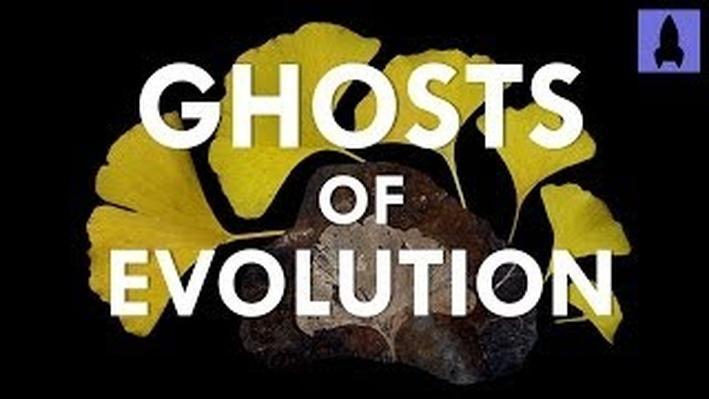 Ghosts of Evolution | It's Okay to be Smart | PBS Digital Studios