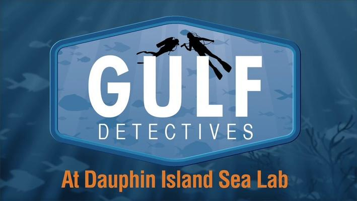 Gulf Detectives at Dauphin Island Sea Lab