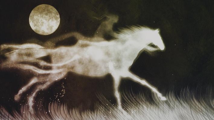 The Comanche and the Horse | Native America