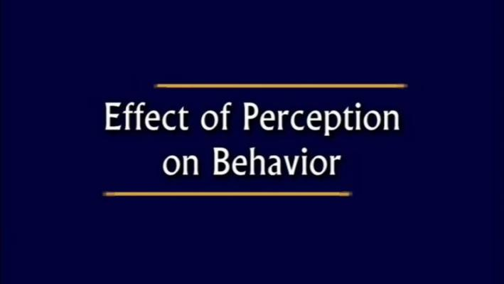 Beyond F.A.T. City: How Difficult Can This Be? | Effect of Perception on Behavior