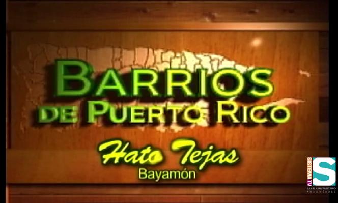 Barrios de Puerto Rico:Barrio Hato Tejas de Bayamón