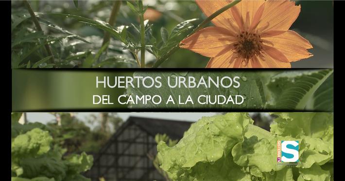 Geoambiente: Huerto Urbanos seg. 1